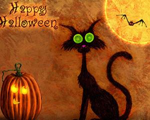 WU CAT halloween
