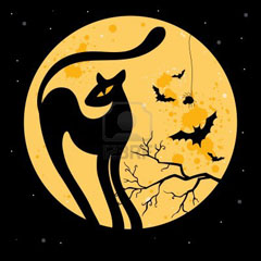 halloween-illustration-with-black-cat-silhouette