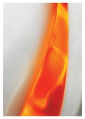 Wed March9 KathyTastilz OrangeShell