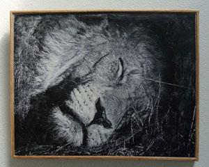 WU 9.13 HelenKGarber lion-mixed-media