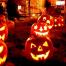 Mon-Oct31-2016-long-pumpkins