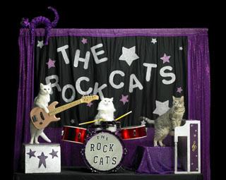 April2014-SMPlayhouse-TheRockCats-1