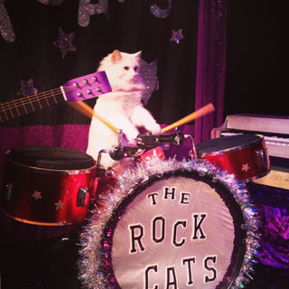 EventReview-AcroCats-drummer