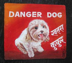 Sat-Aug23-bGGallery-DangerDog-CavoodlePeachyMeghRaj-1