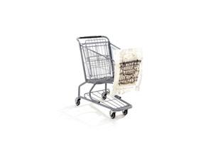Thurs-July23-shoppingCart