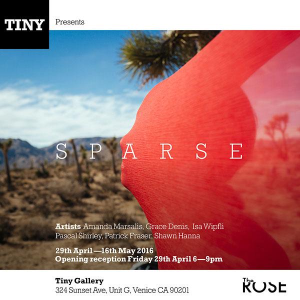Fri-April29-2016-TINYGallery-SPARSE