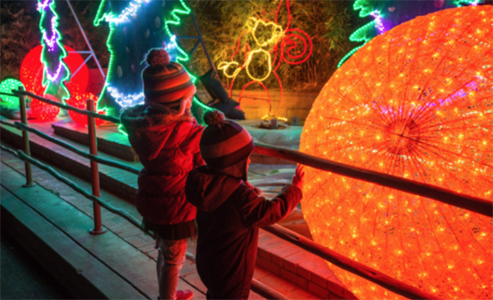 LAZoo-Lights-PhotobyJamiePham