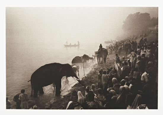 June23-2018-Hauser-Wirth-DonMcCullin-TheGreatElephant-Festival-RiverGandaknearPatna-India