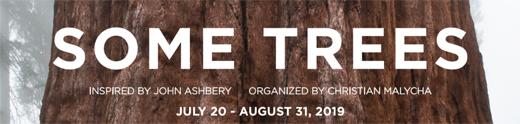 July20-2019-520Size-NinoMier-SomeTrees
