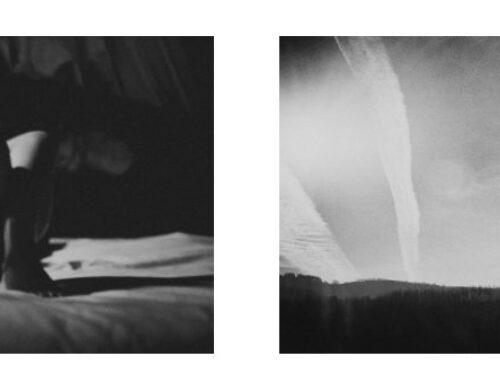 Extended thru November 20, 2021: Galerie XII Los Angeles, Margaret Lansink